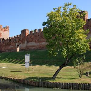 CastelfrancoV