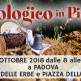EVENTO - El biologico in piassa 2018
